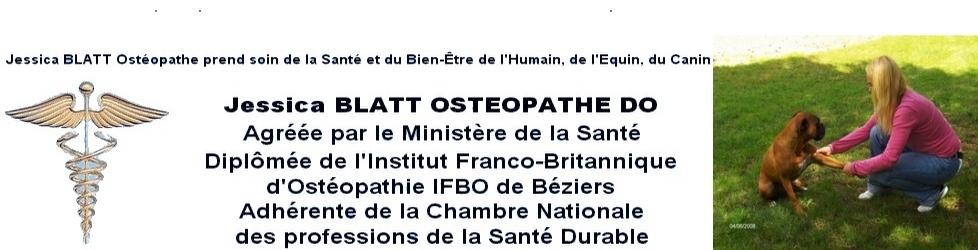 Osteopathe DO Equin Canin Humain